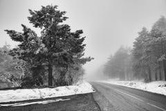 Montagna del divcibare della nebbia e della strada fotografie stock