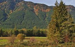 montagna del fuoco di colore Fotografia Stock