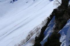 Montagna del Giappone con la neve di inverno Immagine Stock Libera da Diritti