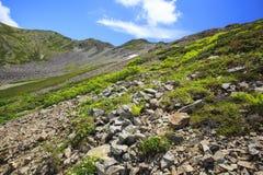 Montagna del giapponese di estate Fotografia Stock