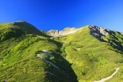 Montagna del giapponese di estate Immagini Stock Libere da Diritti
