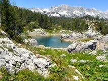 montagna del lago Immagini Stock Libere da Diritti