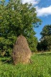 Montagna del mucchio di fieno Paesaggio carpatico Fotografia Stock