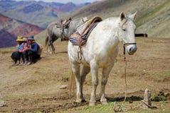 Montagna del Perù Fotografie Stock Libere da Diritti