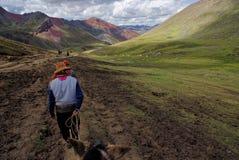 Montagna del Perù Immagine Stock