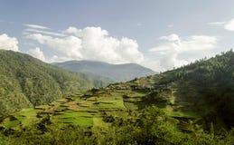 Montagna del villaggio con l'agricoltura del terrazzo Immagine Stock Libera da Diritti