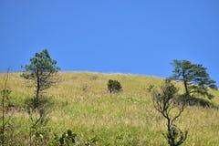 montagna del wugong del æ¦åŠŸå±± Fotografie Stock Libere da Diritti