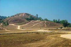 Montagna dell'erba asciutta Fotografia Stock