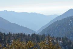 Montagna dell'orso Fotografia Stock Libera da Diritti