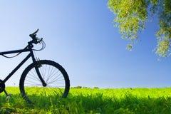montagna della bicicletta Immagine Stock