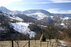 Montagna della Cesalpina immagini stock