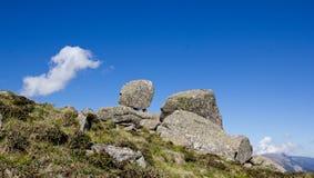 Montagna della Drago-tartaruga Immagini Stock