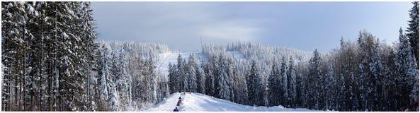 Montagna della foresta di inverno di Panoram Fotografia Stock
