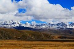 Montagna della neve di Yala e pascolo di Tagong Fotografia Stock