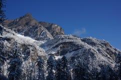 Montagna della neve nella foresta fotografia stock libera da diritti