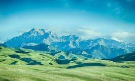 Montagna della neve, prato Fotografie Stock Libere da Diritti