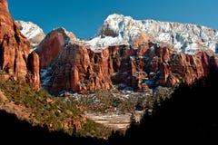 Montagna della presa dei cervi in inverno immagine stock
