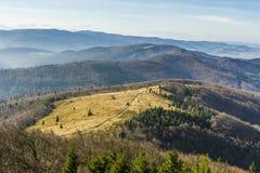 Montagna della radura Fotografia Stock
