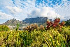 Montagna della Tabella a Città del Capo Sudafrica fotografia stock libera da diritti