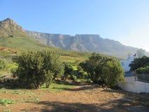 Montagna della Tabella presa dalla traccia nella riserva naturale immagini stock libere da diritti