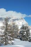 Montagna delle alpi Fotografie Stock Libere da Diritti
