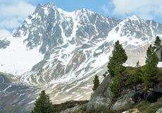 Montagna delle alpi di estate (Austria) Fotografia Stock Libera da Diritti