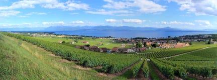 Montagna delle alpi e lago geneva, Svizzera Immagine Stock