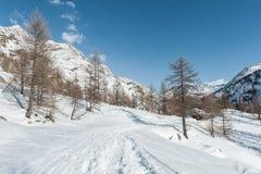 Montagna delle alpi nell'inverno Fotografie Stock Libere da Diritti