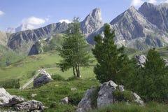 Montagna delle dolomia con gli alberi nella priorità alta Immagini Stock