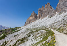 Montagna delle dolomia di estate Immagine Stock