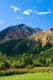 Montagna delle pecore Fotografia Stock