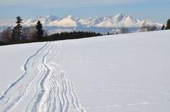 Montagna dello Snowy Immagine Stock Libera da Diritti