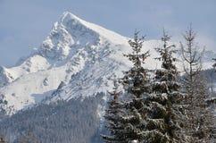 Montagna dello Snowy Fotografie Stock Libere da Diritti