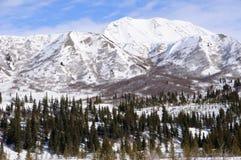 Montagna dello Snowy nell'intervallo di Alaska nella sorgente Immagine Stock