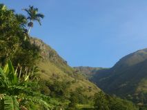 Montagna dello Sri Lanka fotografia stock libera da diritti