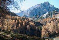 Montagna di Alpe Immagine Stock