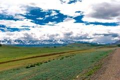 Montagna di Altai di estate Immagini Stock