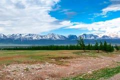 Montagna di Altai di estate Fotografia Stock Libera da Diritti