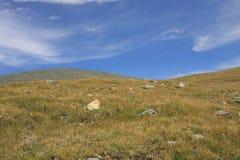 Montagna di Altai in estate Fotografia Stock