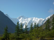 Montagna di Belukha, Altai Fotografia Stock Libera da Diritti
