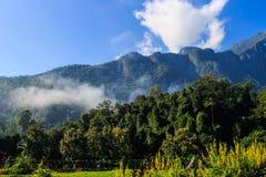 Montagna di Chiang Dao Fotografia Stock Libera da Diritti