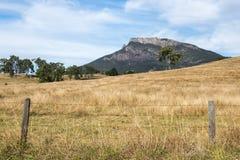 Montagna di entroterra e campo nell'orlo scenico, Queensland fotografia stock libera da diritti