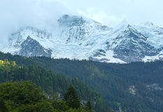 Montagna di estate con neve (Svizzera) Fotografie Stock