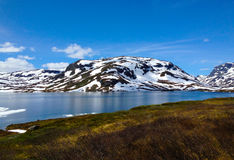 Montagna di estate di Snowy Fotografia Stock Libera da Diritti
