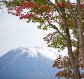 Montagna di Fuji Immagini Stock