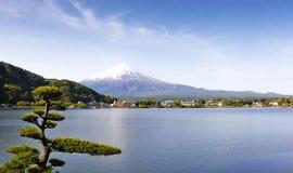 Montagna di Fuji Immagini Stock Libere da Diritti