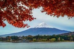 Montagna di Fuji con il reaf dell'acero rosso Immagine Stock