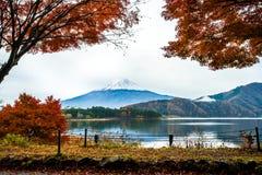 Montagna di Fuji con il reaf dell'acero rosso Immagine Stock Libera da Diritti