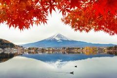 Montagna di Fuji e di Autumn Season nel lago Kawaguchiko, Giappone Fotografie Stock