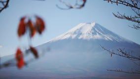 Montagna di Fuji nel Giappone, autunno stock footage
